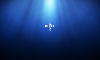Mer Project