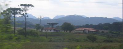 A farm in Paraná, Brazil