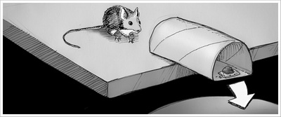 Humane mousetrap illustration by Chris Glass
